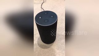 Here is Amazon Alexa's favourite Christmas song - Video