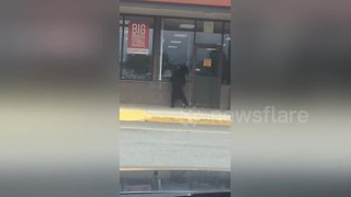 Wild bear spotted outside supermarket - Video