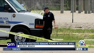 Possible human remains found in Delray Beach - Video