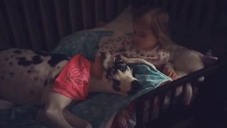 Little girl scolds Great Dane for farting on her bed