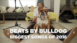 Beats by bulldog: Biggest songs of 2016 - Video