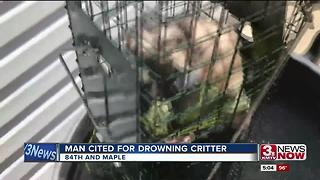 Man cited with cruelty for drowning possum - Video
