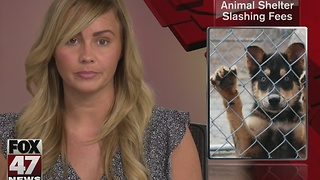 Ingham County Animal Shelter reducing adoption fees - Video