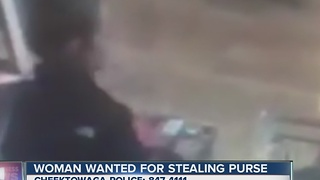 Cheektowaga police looking for woman who stole purse - Video