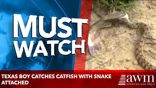 Texas boy catches catfish with snake attached - Video