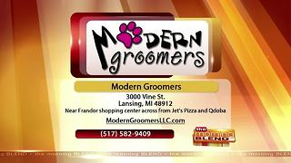 Modern Groomers-7/6/17 - Video