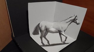 How to draw a 3D horse - Video
