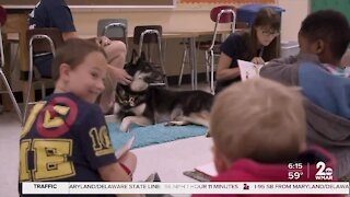 SPCA Wagging Tales Reading Hour!