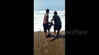 Heart-warming rescue of dolphin stranded on Bay of Bengal beach