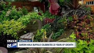 Gardeners show off their gardens for GardenWalk Buffalo - Video