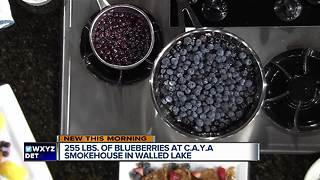 Blueberry Compote with CAYA Smokehouse Grill - Video