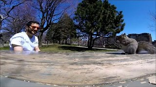 Squirrel Rudely Interrupts Picnic and Steals GoPro - Video