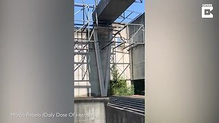BRAVE DAREDEVIL SWALLOWS FEAR BY HOPPING ACROSS THIN BEAMS
