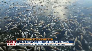 Manatee County plan for red tide clean-up - Video