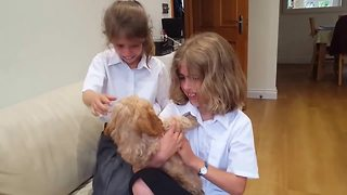 Sisters emotional after new puppy surprise - Video