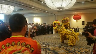 SOUTH AFRICA - Cape Town - Chinese New Year (Video) (N4p)