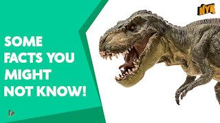 Top 4 Facts About Dinosaurs