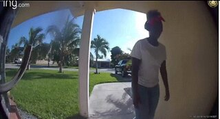VIDEO: Porch pirate foiled by Amazon driver, police say