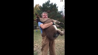 Watch This Man Preciously Cuddles A Foal In His Arms!