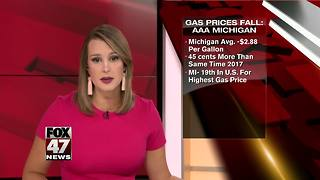 AAA Michigan: Statewide average daily gas price falls by 5 cents - Video