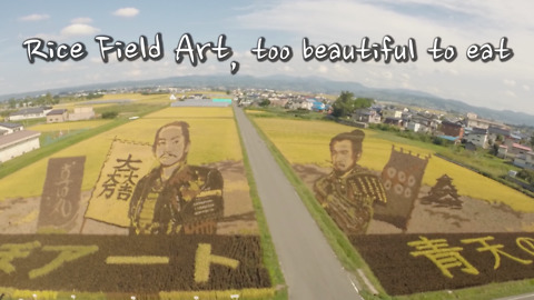 Rice Field Art Has Spread All Over Japan