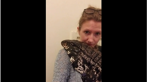Huge pet lizard loves to cuddle with owner