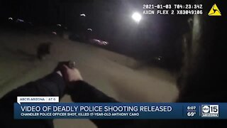 Video of deadly police shooting released