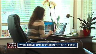 Work from home opportunities on the rise - Video