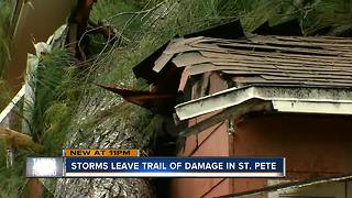 Tree falls on homes