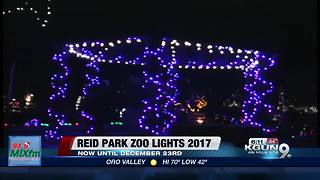 Annual Zoo Lights at Reid Park Zoo kicks off - Video