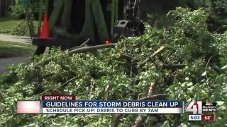 Guidelines for storm debris clean up - Video