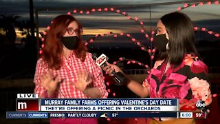 Murray Family Farms offers First ever Valentine's Day event