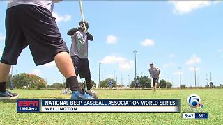 National Beep Ball Association World Series - Video