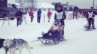 Dogs, Sleds, and Snow: The Iditarod Trail Race Begins - Video