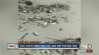 Governor Rick Scott addresses red tide issues - Video