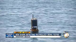 New shark detection technology being tested