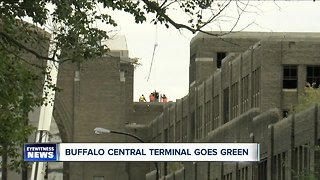 Central Terminal going green