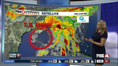 Tropical Storm Cindy heads towards northern Gulf coast