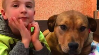 Boy Determined to Save Rescue Dogs Pleads for New Home for Canine Friend - Video