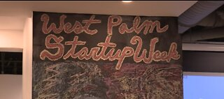 Support for Palm Beach start ups