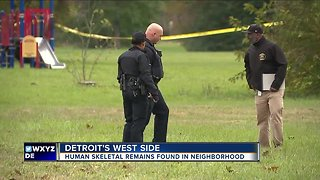 Detroit Police investigate skeletal remains found in sewer near Steopel Park - Video