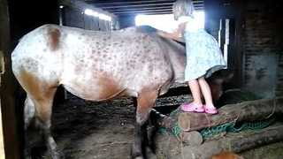 Little Girl Struggles to Climb on Horse - Video
