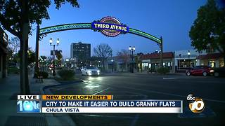 City to make it easier to build granny flats - Video