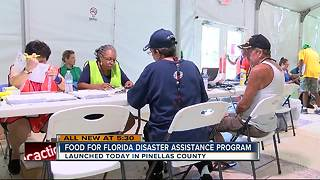 Hurricane food assistance program begins in Pinellas County - Video