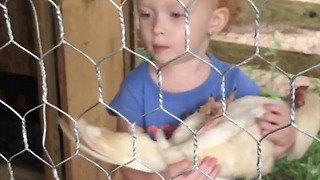 A Tot Girl Rocks A Chicken To Sleep - Video