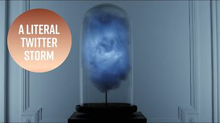 Trump-alert: This lamp has a unique warning system - Video