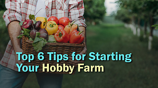 Top 6 Tips for Starting Your Hobby Farm - Video