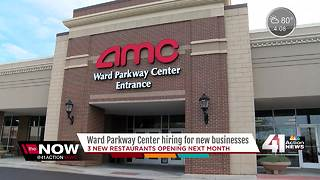 Ward Parkway Center hosts job fair - Video