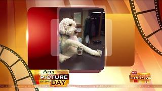 Art's Cameras Plus Picture of the Day for May 9! - Video