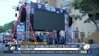 North Park hosts giant World Cup Party - Video